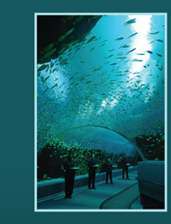 Aquarium Image